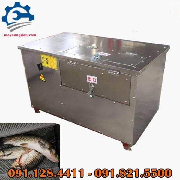Máy đánh vảy cá tự động, máy đánh vảy cá công nghiệp chính hãng