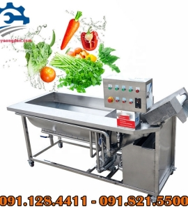 Máy rửa rau củ quả công nghiệp, máy rửa rau củ ozone