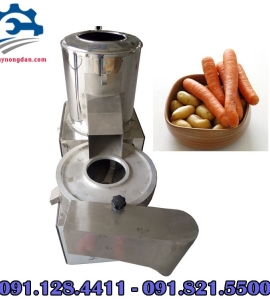 Máy rửa và cắt khoai tây đa năng, máy cắt lát, cắt sợi khoai tây