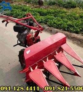 Máy thu hoạch lúa mì đa năng, máy gặt lúa, máy cắt lúa năng suất cao